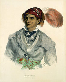 Cherokee chief Tahchee picture