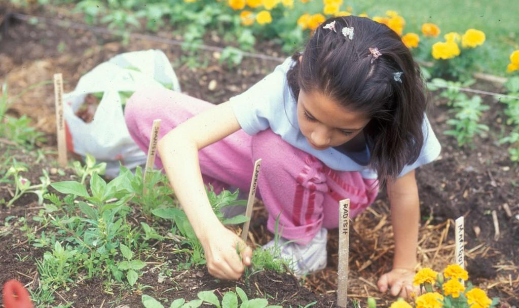 kid weeding picture