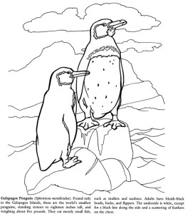 Galapogos Island coloring page printable