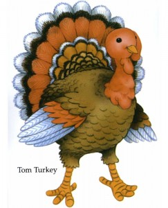 Tom turkey picture