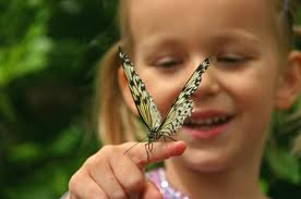 girl with butterfly pictures