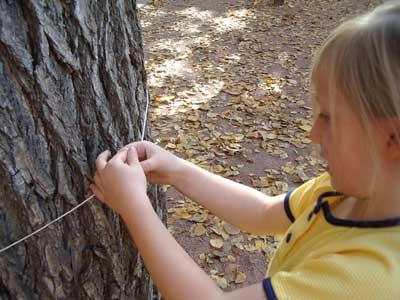 child measuring image