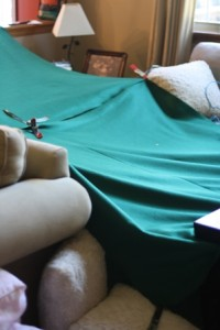 sofa cushion fort picture