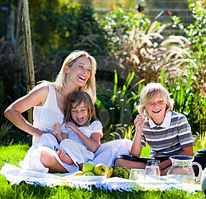 picnic fun picture