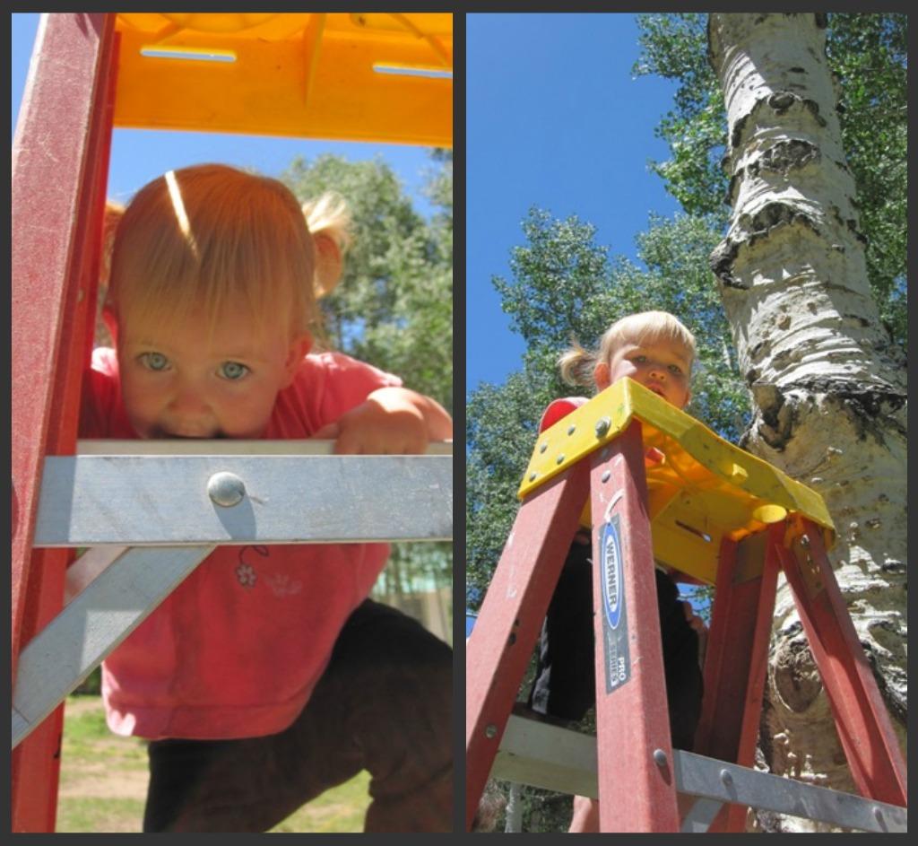 baby climbing ladder