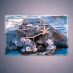 beach fairy house pictures