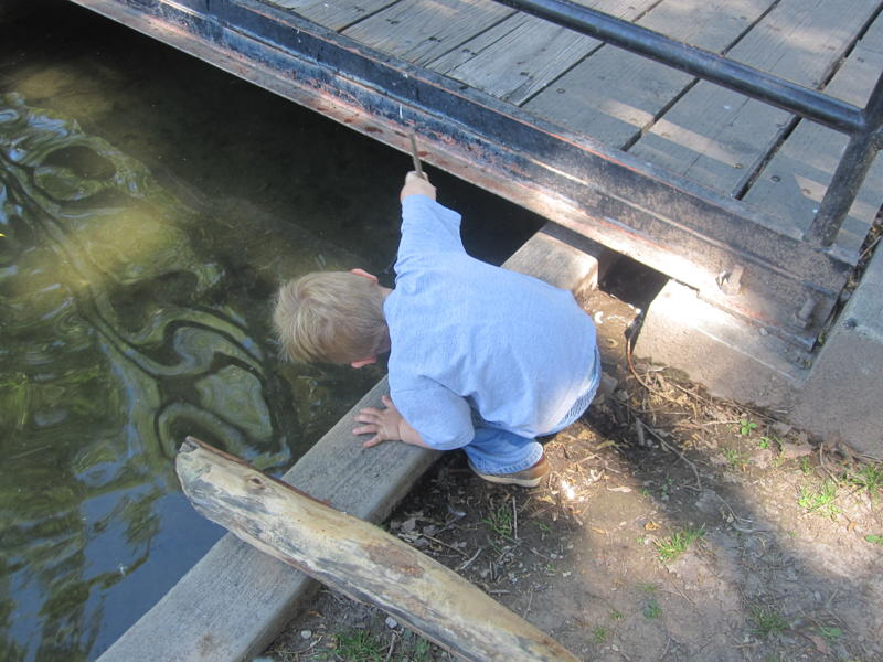 kid playing in water under bridge picture