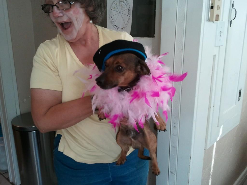our circus dog