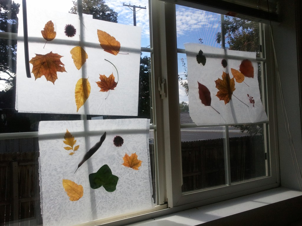 fall leaf sun catcher picture