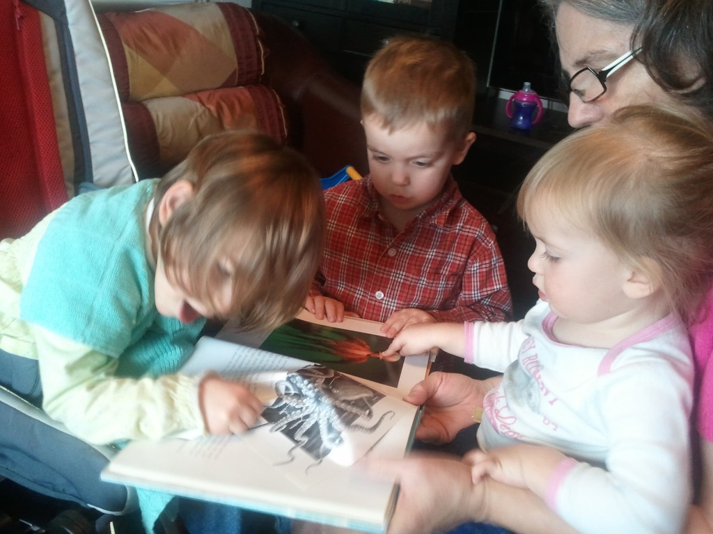 kids learn about octopus from books