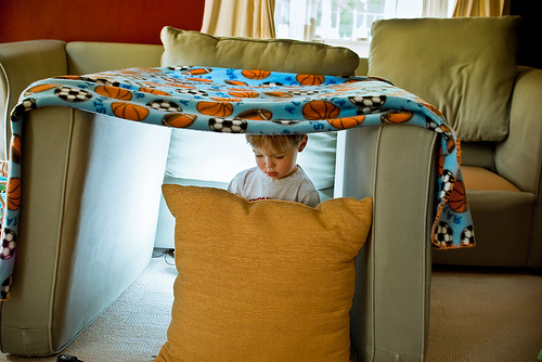 home made fort picture
