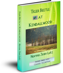 Tiger Beetle at Kendallwood